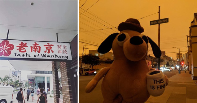 funny photos and memes | taste of wanking sign - everything's fine dog doll in burning california skies forest fires