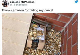 "Package deliveries are a standard part of life these days, especially now with most people still staying home during the pandemic. But not all package deliveries are created equal.  <br></br>One of the biggest problems with getting stuff delivered is making sure no one tries to steal it, which sometimes leads to <strong><a href=""https://www.ebaumsworld.com/pictures/27-delivery-guys-who-dont-give-a-fck/84839297/"" target=""_blank"">delivery guys</a></strong> getting pretty creative with the way they 'hide' your package."
