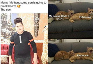 funny memes and pics - my son is going to be a heartbreaker, the son -  saying aill do it later, future me, future me being bit by past lazy meme - cats on a couch