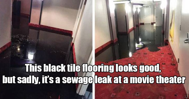 pics that need a double take   the black tile flooring in this movie theater is actually a sewage leak