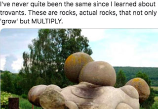 crazy things about everyday items that people learned online | Folk Horror Magpie I've never quite been the same since I learned about trovants. These are rocks, actual rocks, that not only 'grow' but Multiply.