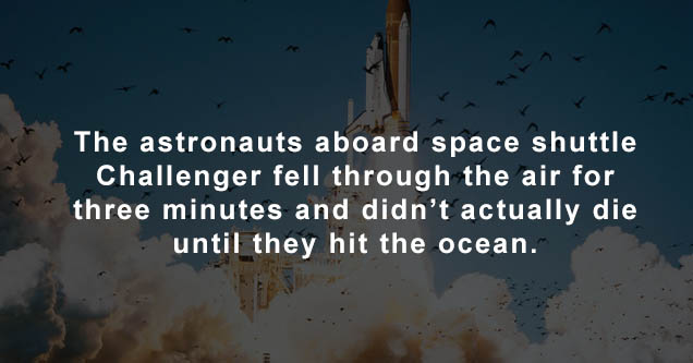 space shuttle challenger sts - The astronauts aboard space shuttle Challenger fell through the air for three minutes and didn't actually die until they hit the ocean.