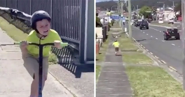 bird chases a scared kid all the way down the street