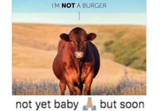 a photo of a cow with text about i am not a burger but you will be soon