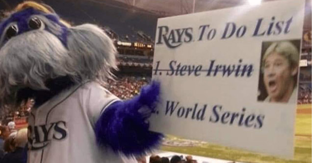 random memes | tampa bay rays steve irwin - Rays. To Do List 1. Steve Irwin World Series Mys