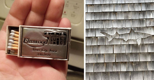 cool and interesting pics | a box of silver tipped matches and a shark in the shingles of a roof