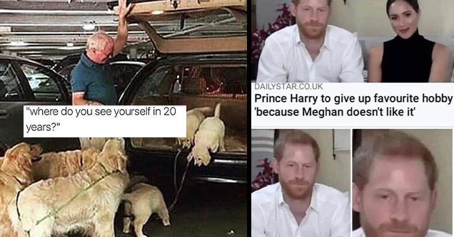 funny memes | where do you see yourself in 20 years dogs | facial expression - Dailystar.Co.Uk Prince Harry to give up favourite hobby 'because Meghan doesn't it'