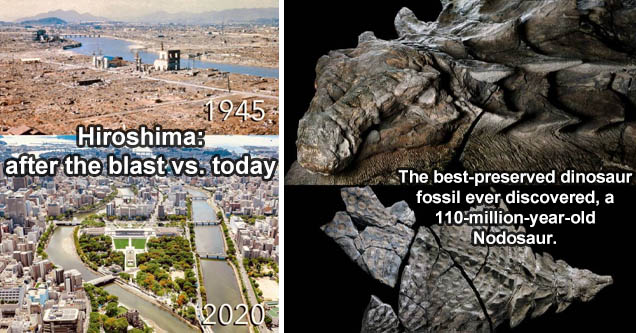 hiroshima - Ni 1945 2020 'Hiroshima, before when it got wiped off the map and less than a single lifetime after.' | zuul crurivastator - 'The best preserved dinosaur fossil ever discovered- a 110 million year old Nodosaur.'