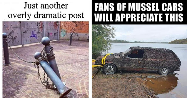 dumb jokes -  fans of mussel cars will appreciate this - car being dragged out of water covered in mussels -  just another overly dramatic post two posts falling onto one another
