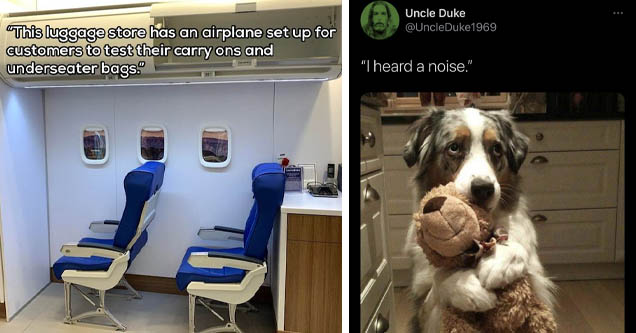 Design - 'This luggage store has an airplane set up for customers to test their carry ons and underseater bags.' | animal snapchat - Uncle Duke