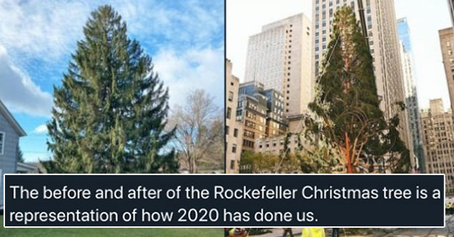 the before and after of the Rockefeller Christmas tree is a representation of how 2020 has done us