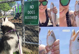 radical randoms -  no dogs allowed -  woman holding a fish - harder