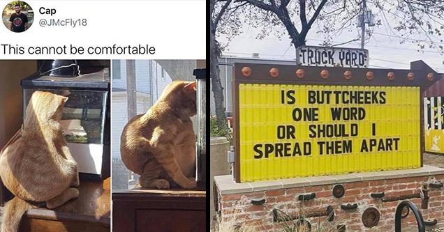 30 забавных мемов, которые потратят ваше время зря