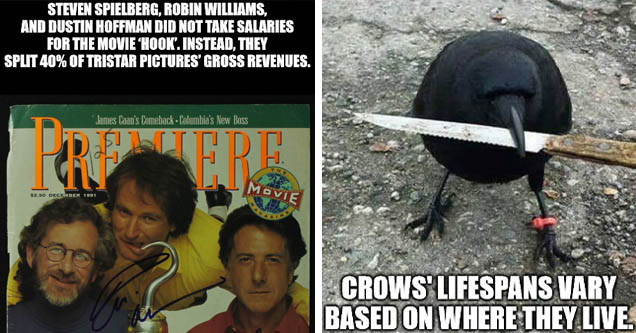 Steven Spielberg, Robin Williams, And Dustin Hoffman Did Not Take Salaries For The Movie Hook'. Instead, They Split 40% Of Tristar Pictures' Gross Revenues. James Caan's Comeback Columbia's New Boss Tot Movie $2. In Barbra Streisand | crow knife meme - Cr