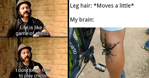 funny memes | life is like a game of chess meme - Life is a gamelof chess I dont know how to play chess | Internet meme - Leg hair Moves a little My brain Varo