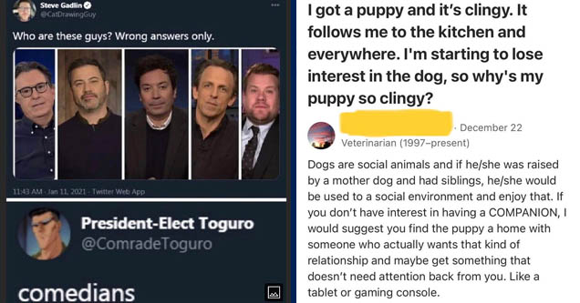 photo caption - Odo Steve Gadlin Guy Who are these guys? Wrong answers only. Twitter Web App PresidentElect Toguro comedians | funny pics of anything - I got a puppy and it's clingy. It s me to the kitchen and everywhere. I'm starting to lose interest in