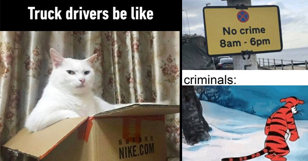 truck drivers be like
