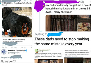 people caught in lies -  AKC recognized these dogs as not family friendly -  no we don't? -  these dad really have to stop  doing this every year