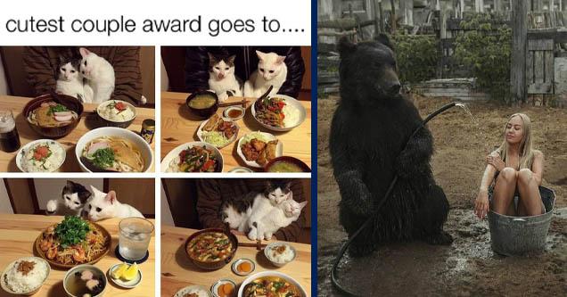 30 крутых фото и мемов, с которыми стоит отдохнуть