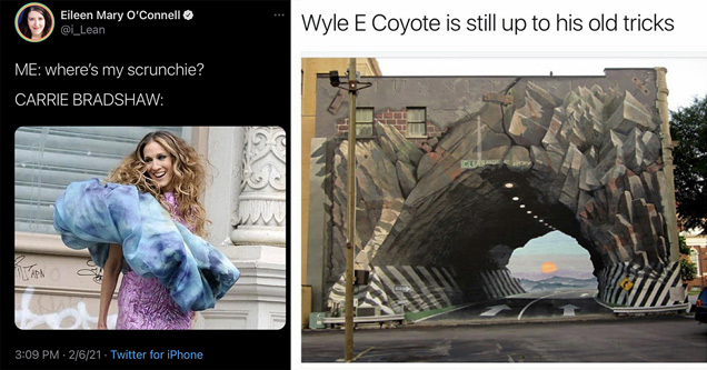 funny and fresh pics and memes |me where's my scrunchie carrie bradshaw - wyle e coyote is still up to his old tricks