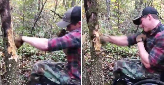 madison cawthorn punching a tree