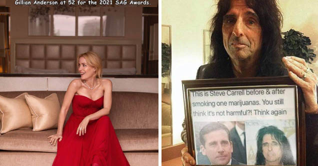 gown - Gillian Anderson at 52 for the 2021 Sag Awards.   alice cooper steve carrell - This is Steve Carrell before & after smoking one marijuanas. You still think it's not harmful?! Think again Hicles