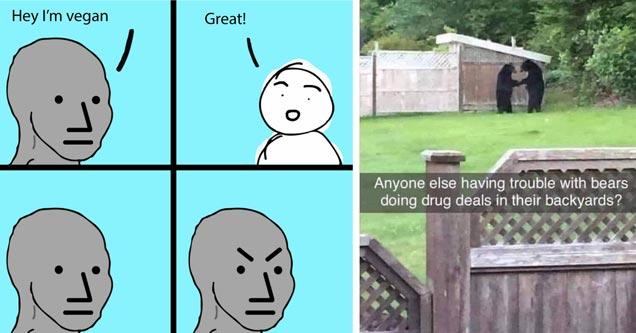 an im vegan npc meme and bears doing a drug deal
