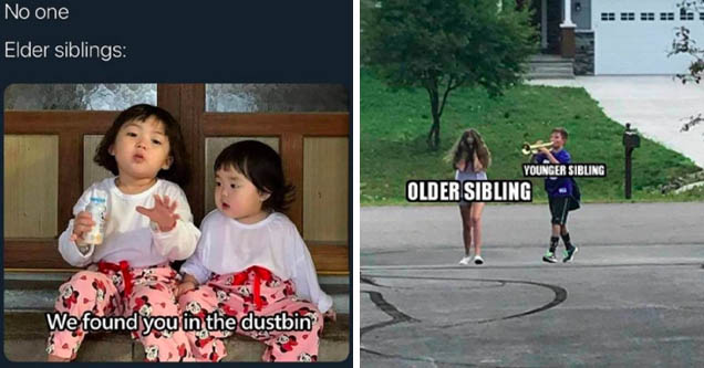 Internet meme - No one Elder siblings We found you in the dustbin | cook out - Younger Sibling Older Sibling