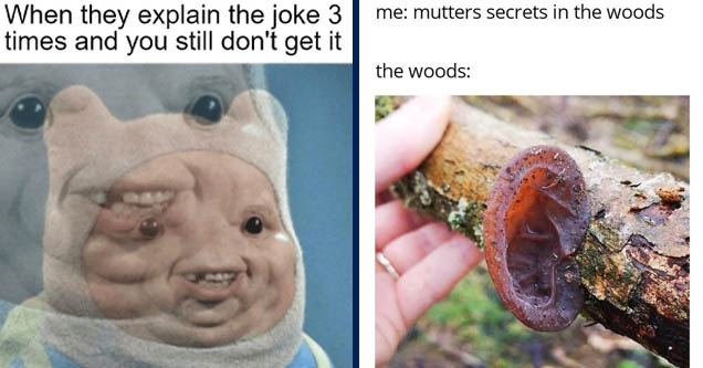 head - When they explain the joke 3 times and you still don't get it | trees have ears - me mutters secrets in the woods the woods