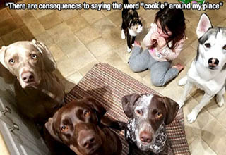 photo caption - There are consequences to saying the word
