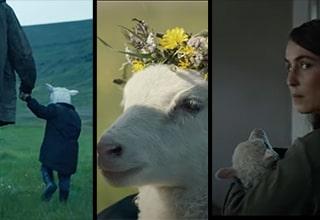 lamb a24 trailer