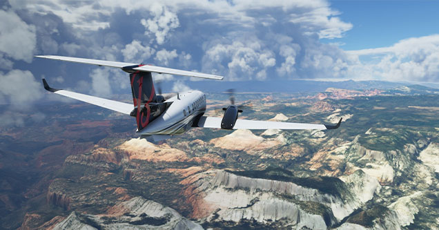 games that thrived in 2020 - Microsoft Flight Simulator