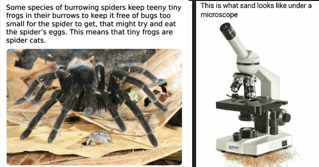 science memes