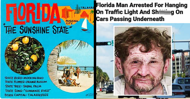 funny florida man memes headlines
