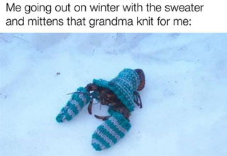 lobster snow - Me going out on winter with the sweater and mittens that grandma knit for me made with mematic