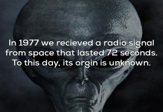 A collection of fascinating yet unsettling facts.