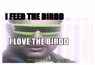 Todays Memes
