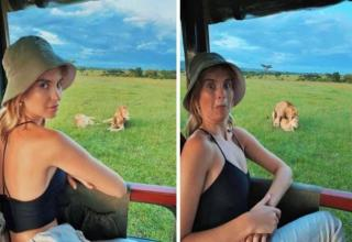 funny random pictures |a woman on a safari watching lions when one mounts the other