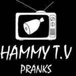 HammyTV