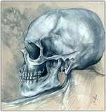 skullboy88