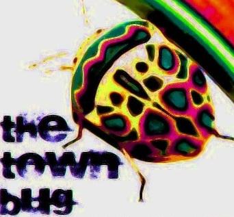 thetownbug