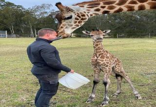 Not a bad job being a director of a zoo!