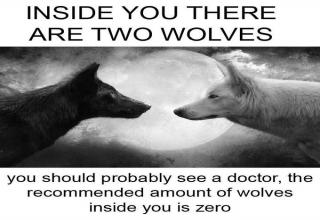 Inside You Are Two Wolves is a proverb that's attributed to Billy Graham as well as the Cherokee Native American tribe.
