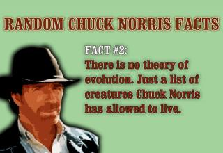 CHUCK NORRIS FACTS AND MOTIVATIONAL POSTERS