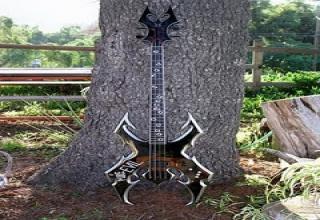 Custom made and unique bass guitars