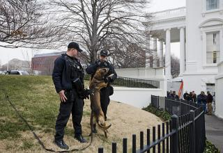 "The black iron fence surrounding the White House will be topped with a row of ""sharp metal points"" in July,"
