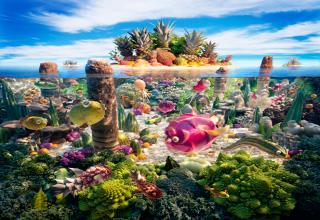 Artist and photographer Carl Warner creates these awesome foodscapes ENTIRELY from different types of food.