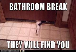Funny and random pictures of people and animals wanting a little privacy...