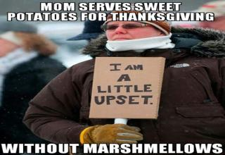Here are 39 funny pictures while you are waiting for the turkey to finish and watching your relatives duke it out over politics, seating arrangements, inheritance, stuffing vs dressing, and whether Aunt Mabel's cranberry sauce is better than that stuff in a can. Here's hoping your pawpaw keeps his teeth in this year.