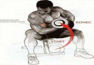 in this pictures you will find the pose, position and style of exercise effect which muscles